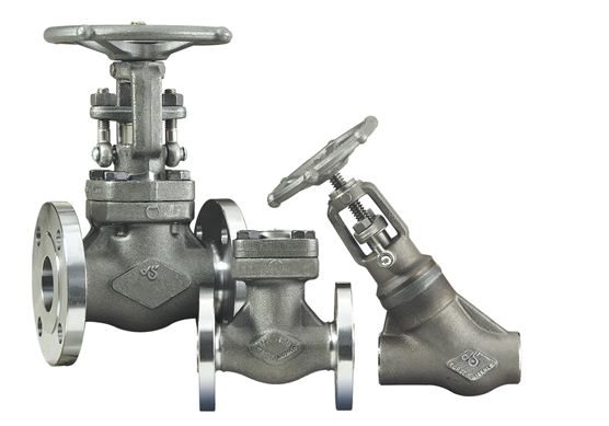 SMO 254 Forged Steel Valves