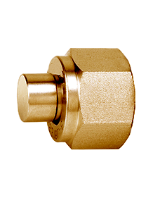 Brass IS-319 / BS - 218 Plug (Port Ends)