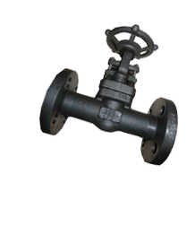Carbon Steel A105N Forged Steel Gate Valves