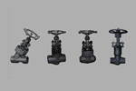 Carbon A105N Forged Steel Globe Valve