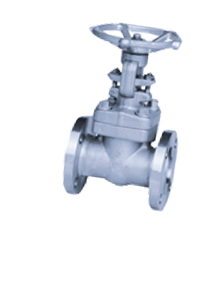 Duplex Steel S32205 Forged Steel Gate Valves