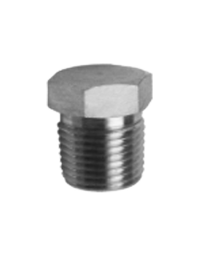 Stainless Steel Hex Pipe Plug