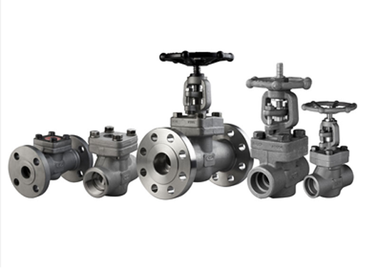 Stainless Steel Forged Steel Valves